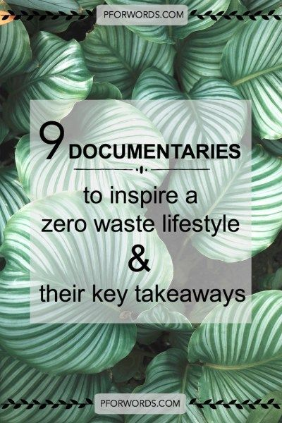 Need a dash of inspiration? Interested in living a zero waste life? These 9 documentaries will motivate you to live a more sustainable life!