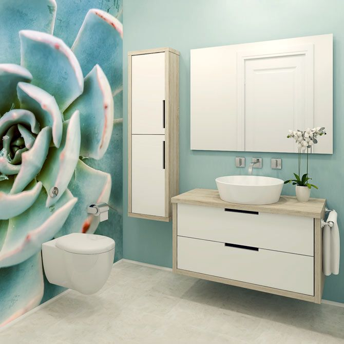 Succulents are here to stay! We love this pop in our teal bathroom (RF32696311)