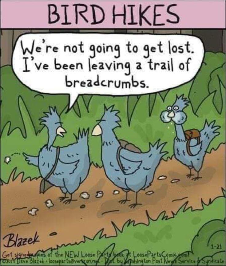 Pin by Liza Nahas on Funny | Cartoon jokes, Funny, Funny ...