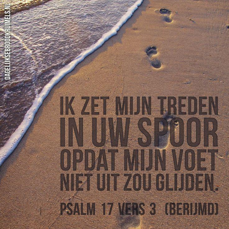 Ik zet mijn treden in Uw spoor, opdat mijn voet niet uit zou glijden. Psalm 17 vers 3 (berijmd) #Psalm https://www.dagelijksebroodkruimels.nl/psalm-17-3/