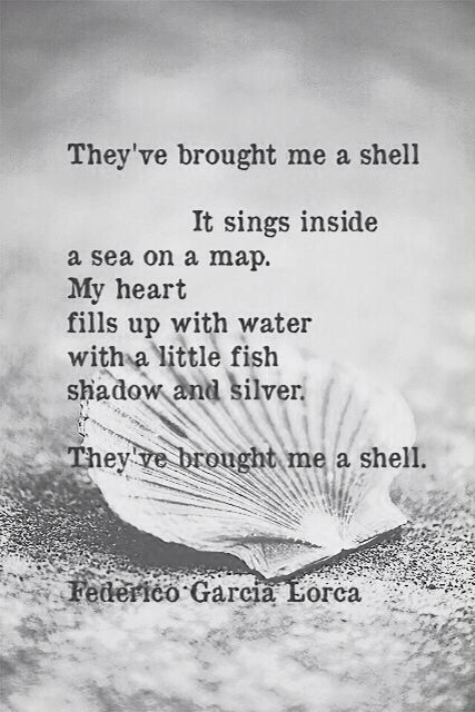 """They've brought me a shell"" -Federico Garcia Lorca"