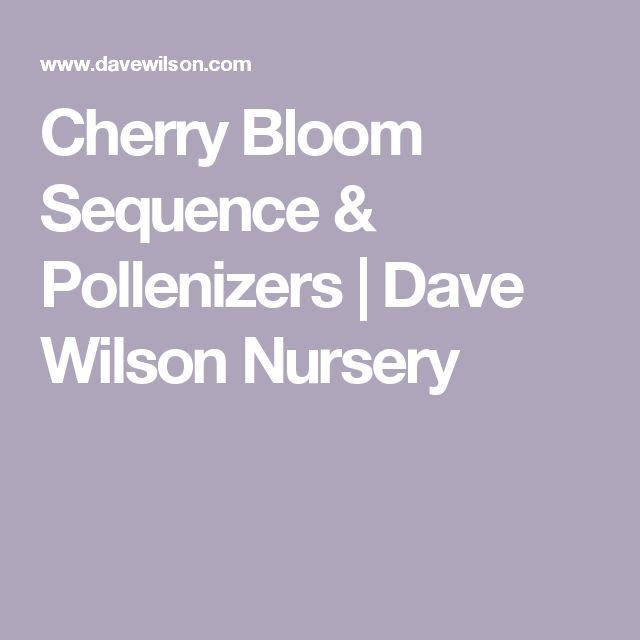 Cherry Bloom Sequence & Pollenizers | Dave Wilson Nursery