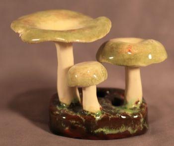 Russula Olivacea Lorenzens Pottery Mushroom