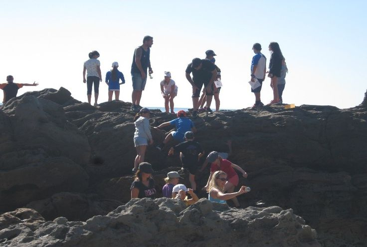 Year 6 Tauranga camp