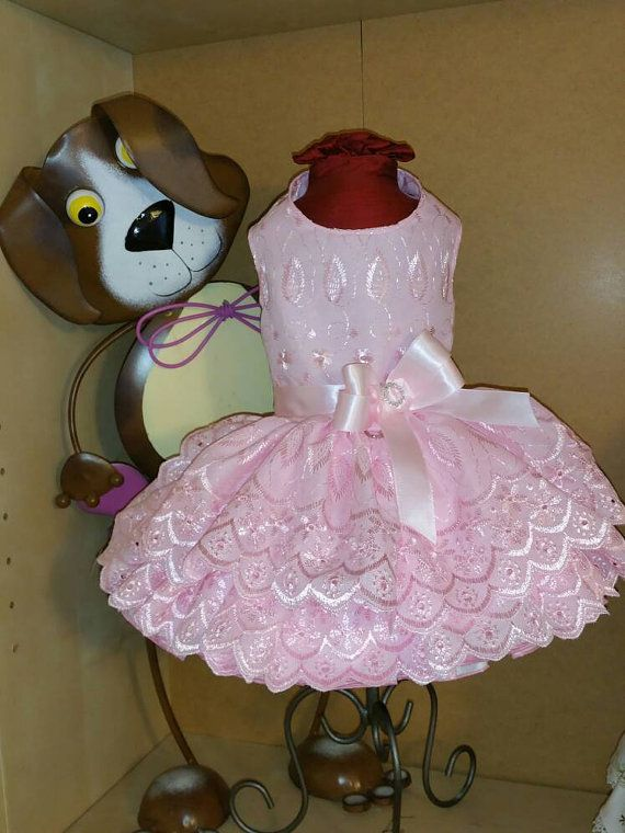 Spring Eyelet Dog Dress in Pink by digginitdesigns on Etsy