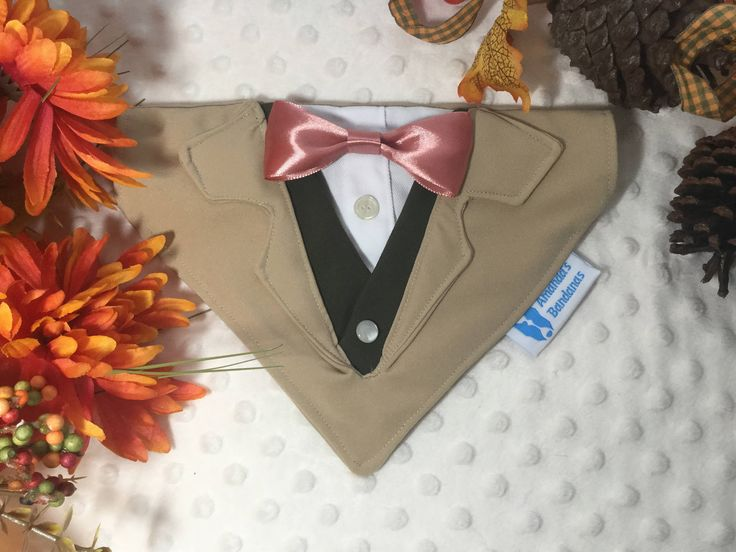 Beige dog tuxedo with optional vest and bow tie, Collar Bandana, dog or cat. small, med or large dogs by AmandasBandanas on Etsy