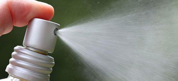 Fabriquer un spray anti-insectes pour le jardin soi-même… Faire fuir naturellement pucerons, altises, chenilles, vers, perce-oreilles, limaces, oléoptères.