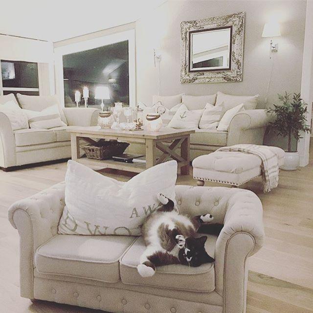 It's not only the little people who likes our sofa 🐾  LOVELY @miss_susie_and_the_bandits #ss17 #interior #kidsinterior #toys #kidsfurniture #furniture #kidsroom #kidsinspo #inredning #barnrumsinredning #barninredning #barnrum #barn #baby #leksaker #barnmöbler #möbler #barnrumsinspo
