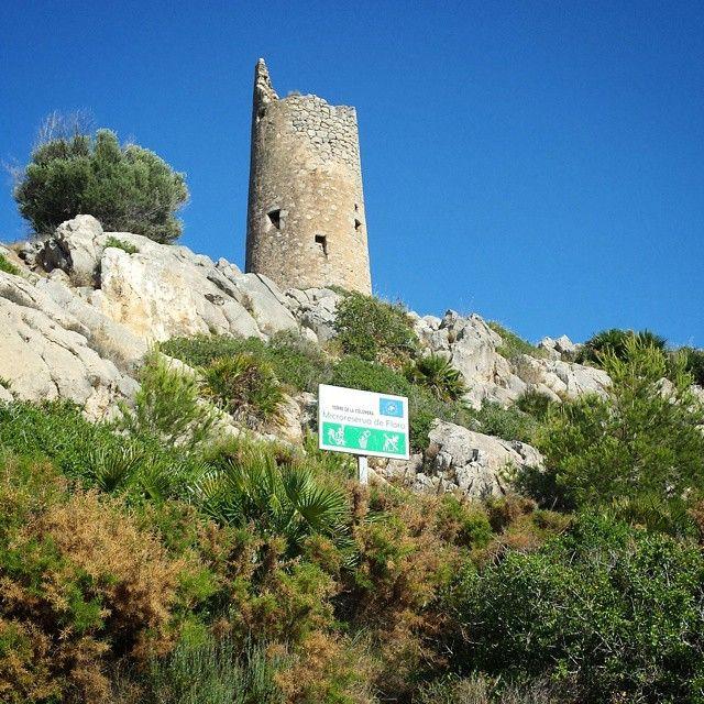Seguimos paseando por la #Viaverde a #Oropesa. #Torre de la #Colomera. #flora #vegetacion #cielo #azul #verde #historia #ruta #bicicleta #mar #paisaje #mediterraneo #Benicàssim #Benicasim #Benicassimparaiso #sol #verano #calor #spain #paradise #nofilter