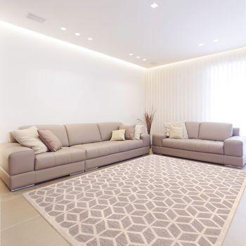 Costco 219 Ren Wil Escher Area Rug Living Room
