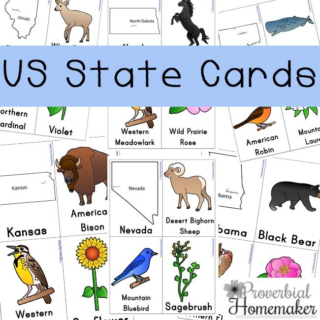us state cards for a fun way to learn about the states - State Printables