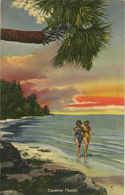 Love It Florida Style: 38 Best Bathing Beauties Vintage Postcards Images On