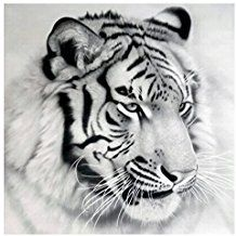 [Yistu Tigre DIY 5D Diamante Pintura De Bordado] Punto De Cruz Diamante DecoracióN Del Hogar ArtesaníA