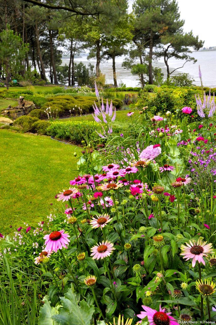 Les 117 meilleures images du tableau Fleurs roses sur Pinterest ...