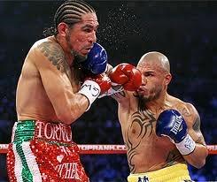 Boxing: Miguel Cotto vs Antonio Margarito II