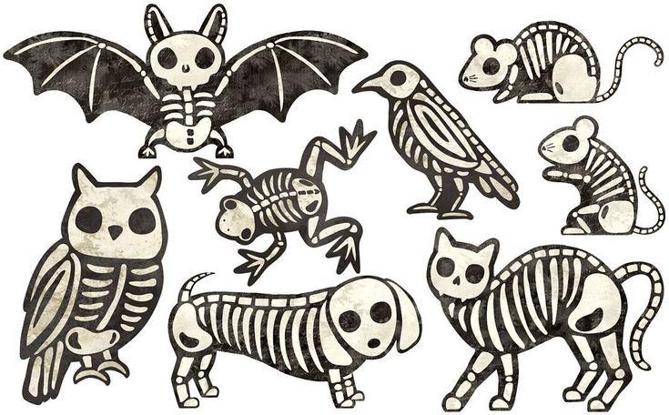 Animal skeletons I made at work. The dog is my favorite. #halloween #illustration