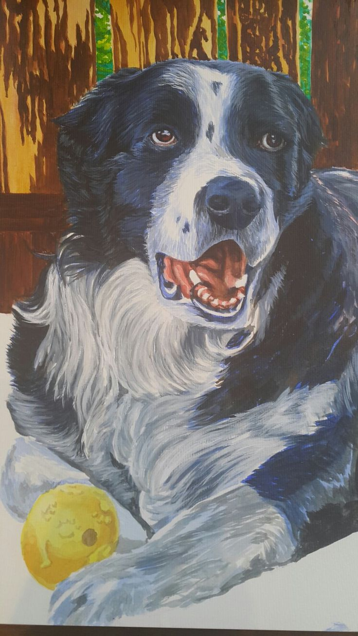 """""""Cody"""" / acrylic on watercolour paper / furryfaces.co.nz"""