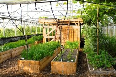 Formations permaculture
