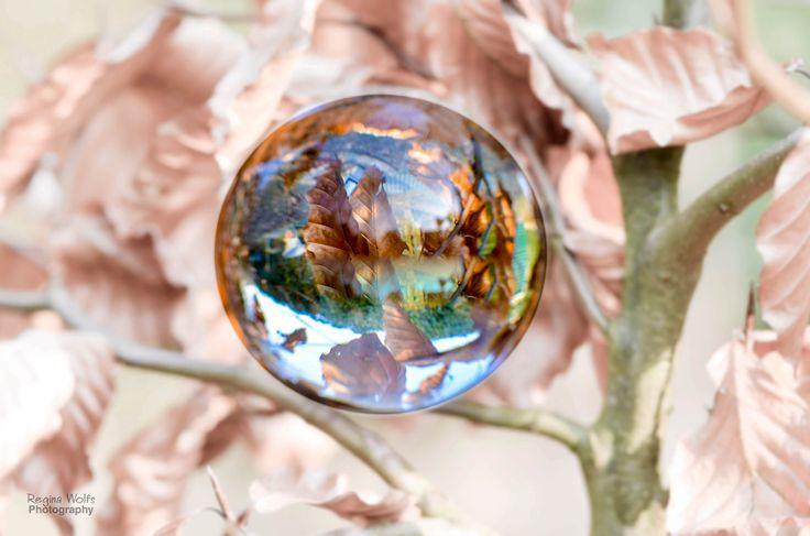 Een glazen bol geeft je een andere kijk op de wereld Als je voor het eerst met een glazen bol op pad gaat, kan het heel frustrerend zijn. Je beeld isniet perfect scherp, je compositie is maarniks...