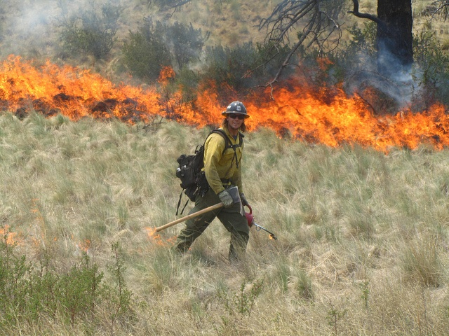 Burn out operations by firefighter. Photo by Alan Sinclair / Photo courtesy of US Forest Service Gila National Forest