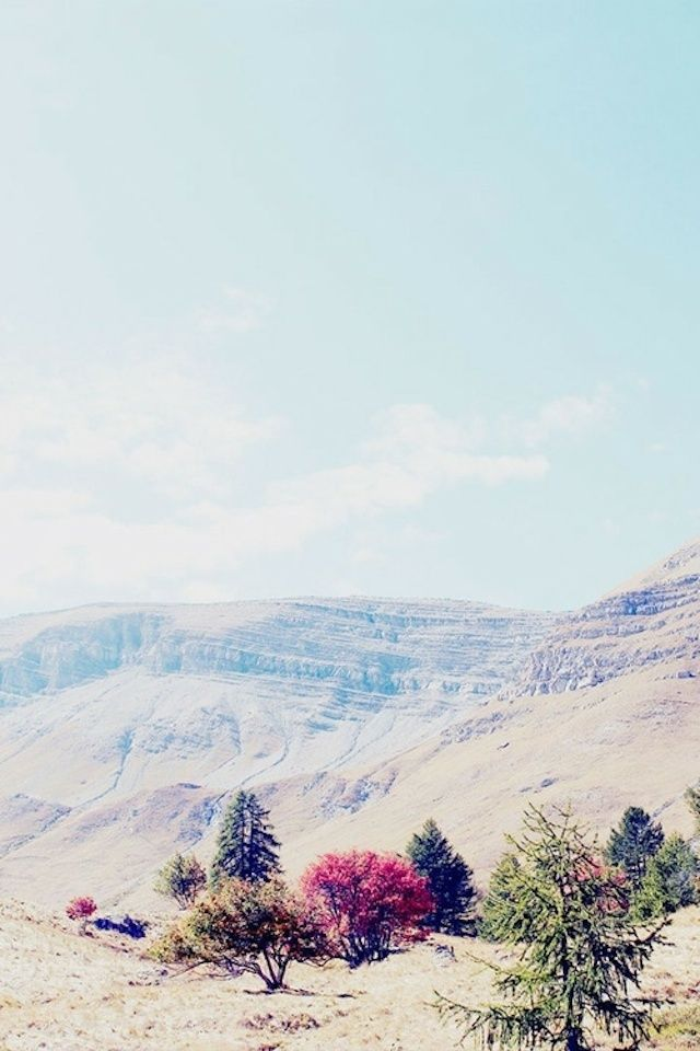 25 #fotografie di #Madre #Natura che vi toglieranno il fiato #mothernature #madrenatura #nature #landscape #paesaggi #mountains #montagne #hills #colline #trees #alberi #colors #colori #green #verde #rosso #red #purple #viola #violet #photography #art #arte #picture