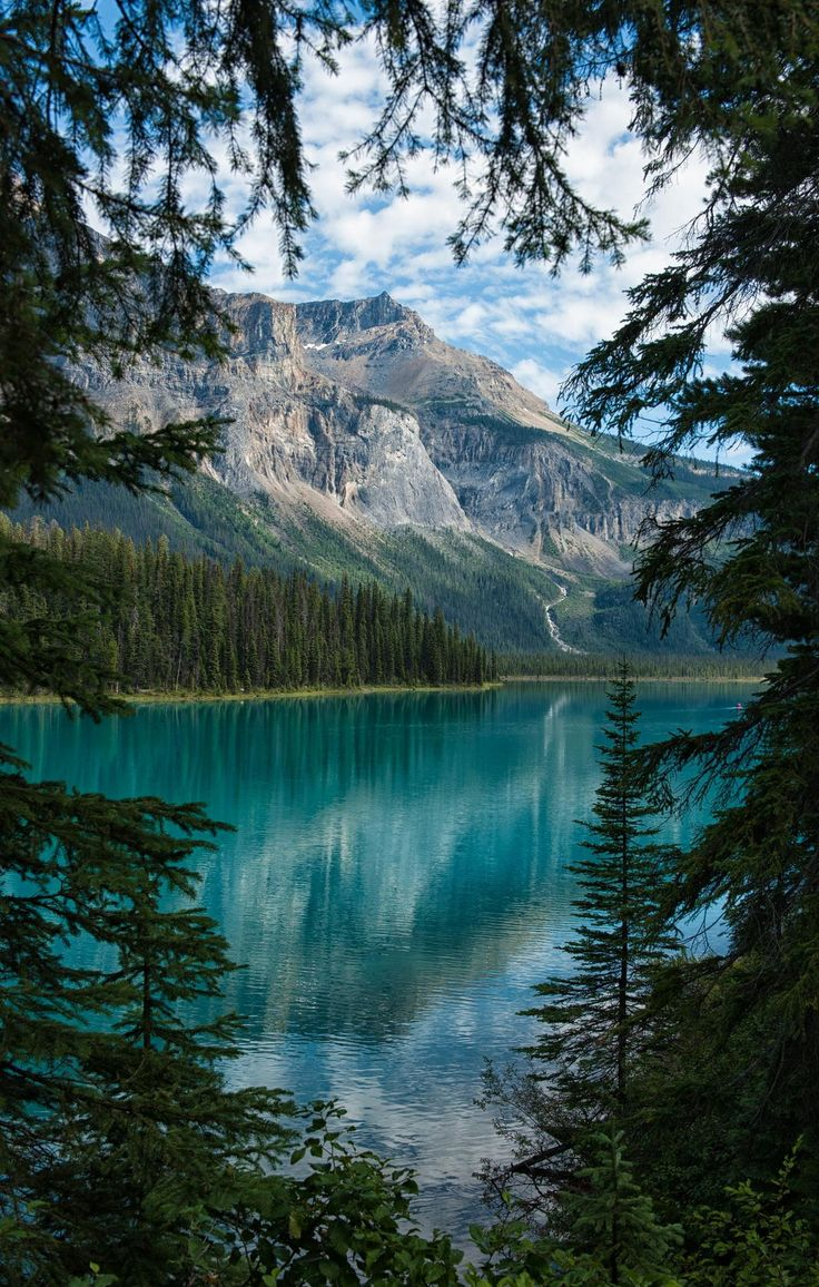 We could see hints of sparkling green from our room, but when we finally found this little lookout between the trees we were stunned at how truly gorgeous Emerald Lake was.