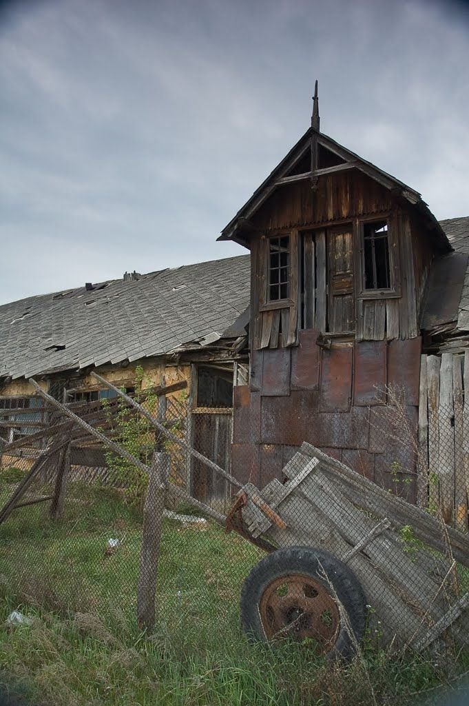 Натальевка. Старые постройки. Свиноферма Фото Кирилл Борцов