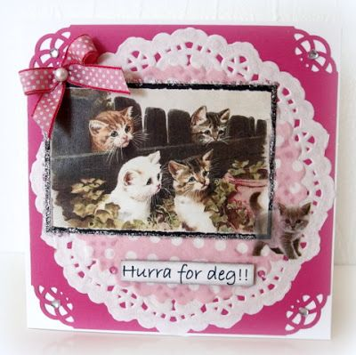Moski Card with cat sticker, and doilies in back ground.