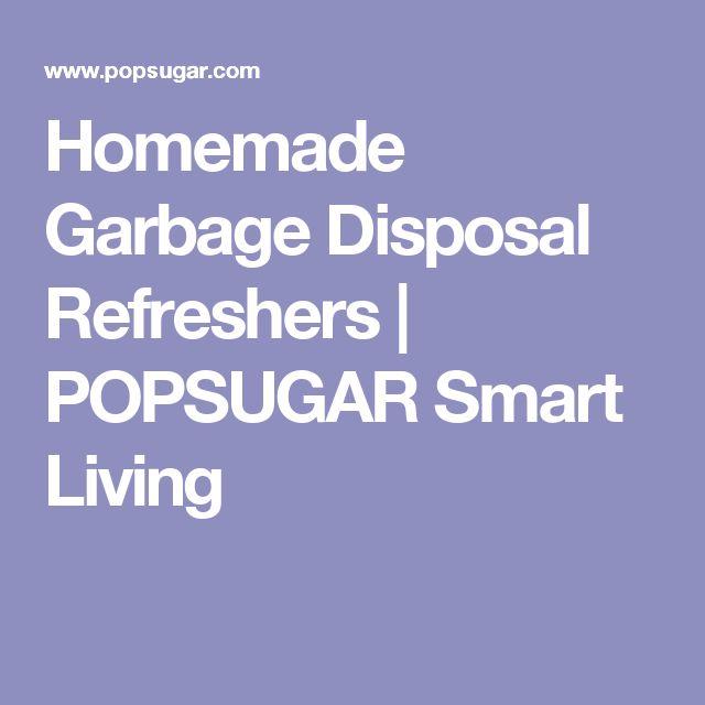 Homemade Garbage Disposal Refreshers   POPSUGAR Smart Living