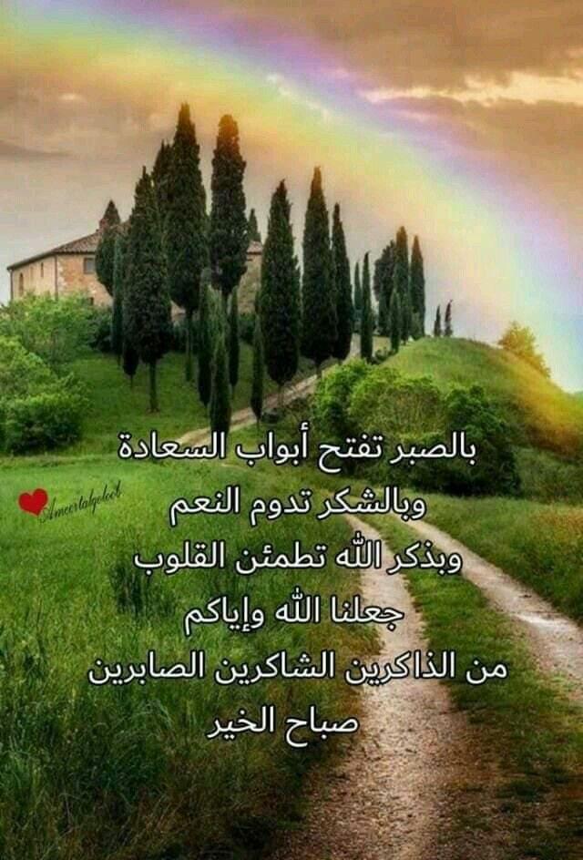 Pin By Sarah Alyaseen On صباحكم مساؤكم ورد Good Morning Flowers Romantic Love Quotes Good Morning