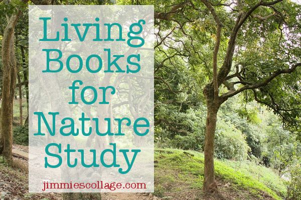 Of course, the best way to learn about nature is through first hand experiences. Nothing can substitute for a nature walk. But a living book with nature themes is a great option when you're not out...