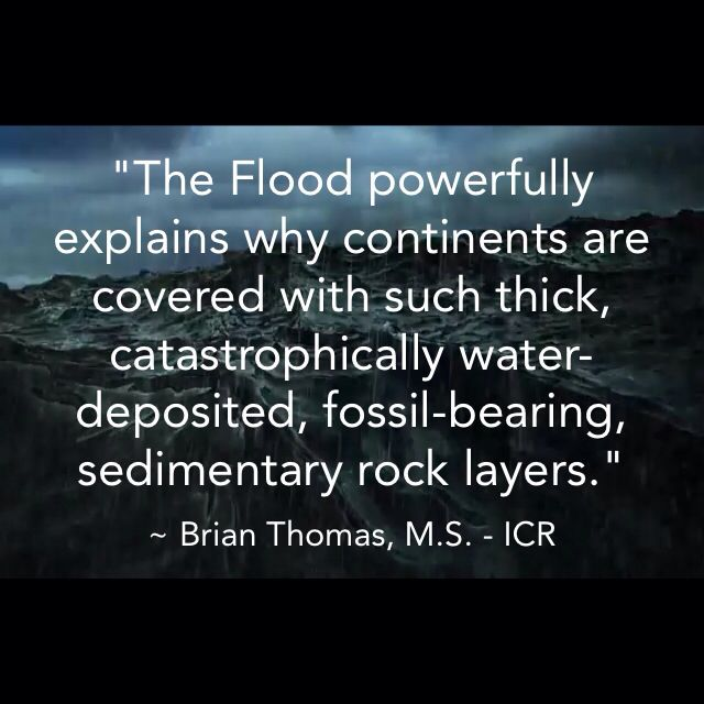 * Mr. Thomas is Science Writer at the Institute for Creation Research. Cite this article: Brian Thomas, M.S. 2014. Do Sand-Dune Sandstones Disprove Noah's Flood?. Acts & Facts. 43 (9).