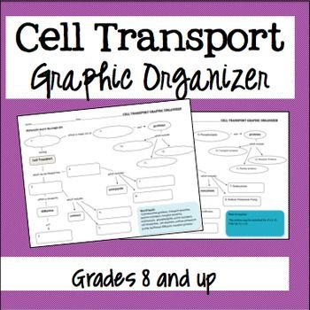 Cell transport graphic organizer. I love graphic organizers because they are so versatile and easy to use!