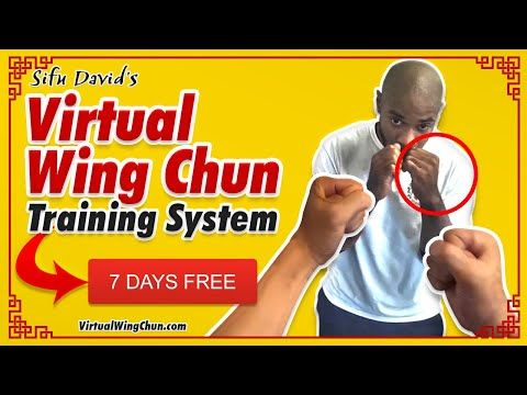 Learn Wing Chun at Home - 7 DAYS FREE! - YouTube