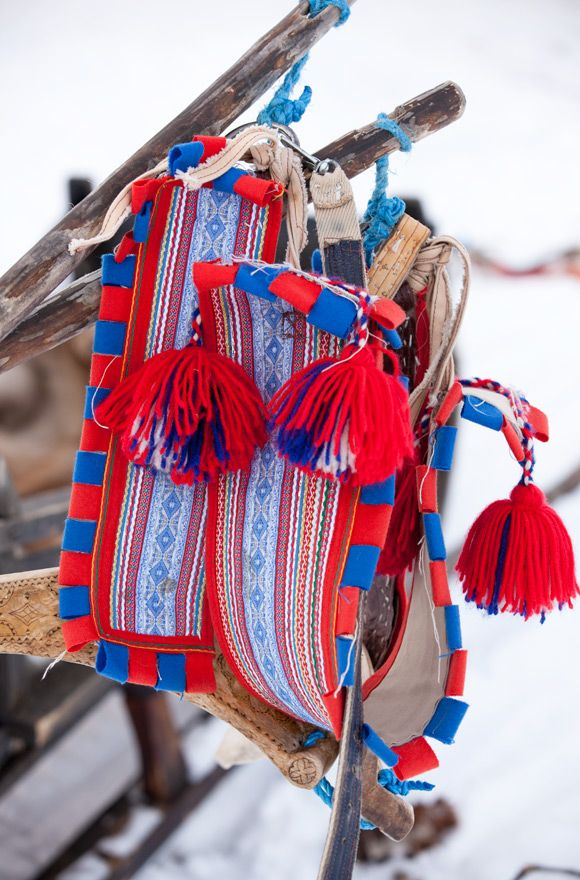 The beauty of the Sami costumes are well known and here even the reindeers are dressed in colorful harness when pulling the sledge.