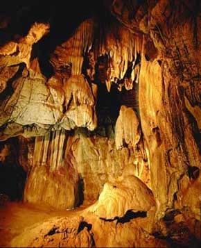 Cradle of Mankind:   It's part of what makes the ancient continent of Africa an attraction to millions of people: Known in South Africa as the Cradle of Humankind, the area of Sterkfontein, Swartkrans, Kromdraai & environs has one of the world's richest concentrations of hominid fossils, providing evidence of human evolution over the last 3.5-million years.    Located in the provinces of Gauteng and North West, the fossil sites cover an area of 47 000 hectares.