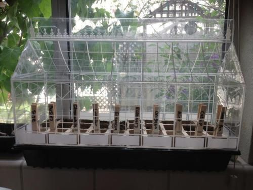 Raise Seedlings in this Mini Greenhouse.  Click on the image or link to find out more now!