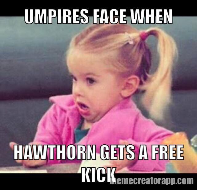 Umpire's face when he gives a free kick to Hawthorn