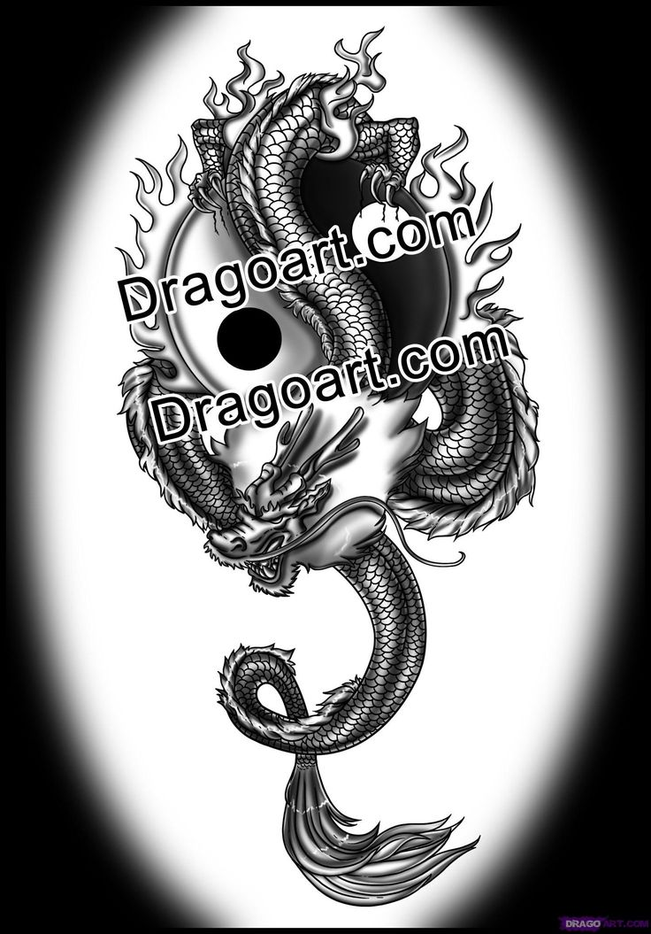 how to draw a chinese dragon tattoo
