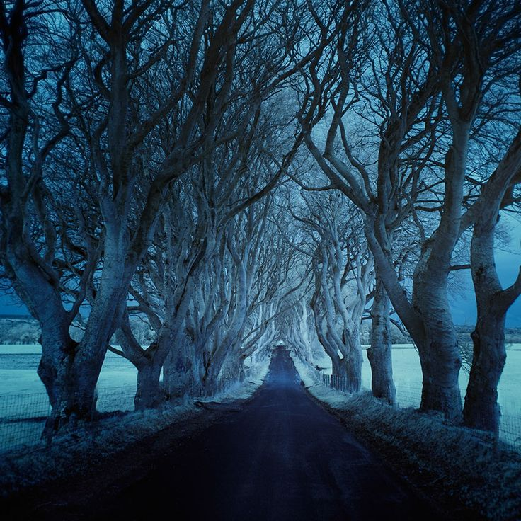 Photographer Captures Dark And Lonely Roads Around The World