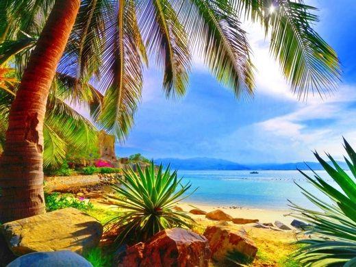 Nyár - pálmafák, tenger
