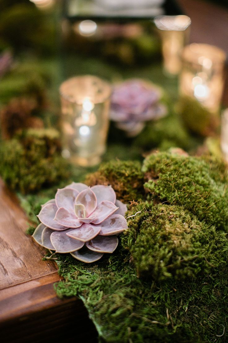25 Best Ideas About Moss Table Runner On Pinterest Moss