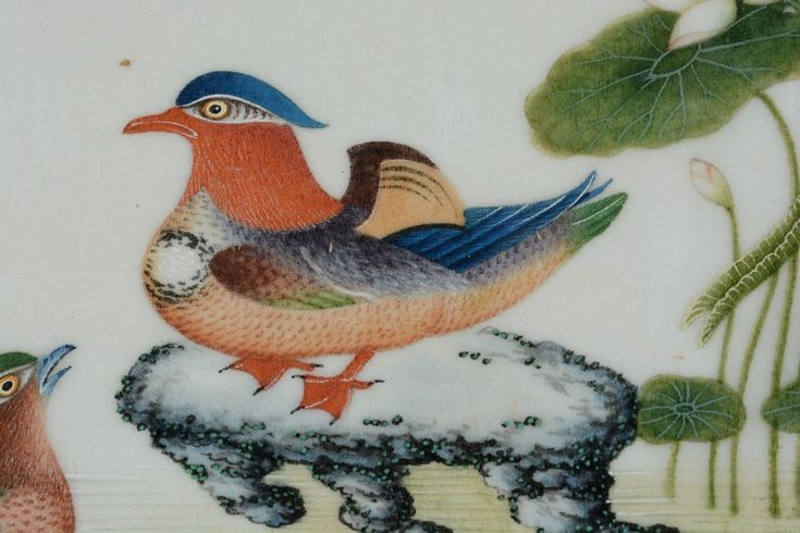 Antique Chinese Pith Rice Paper Painting Two Ducks and Water Lilies | eBay