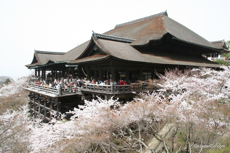 Kiyomizu-dera with impressive veranda and cherry blossom is a World Heritage Site in Kyoto Japan.