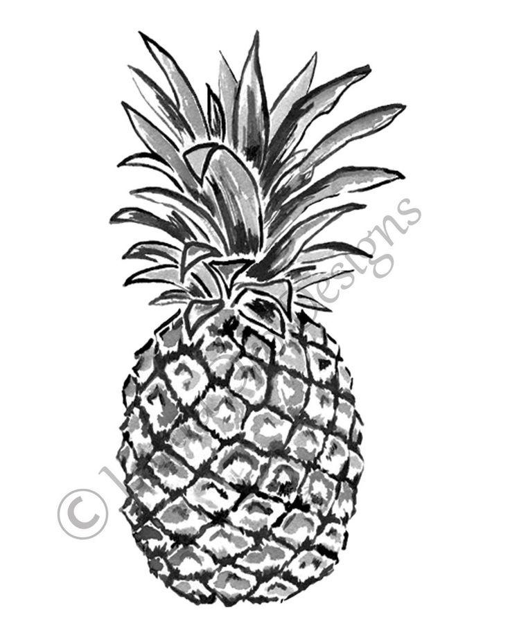 pineapple drawing. 8x10 pineapple illustration-jet black drawing