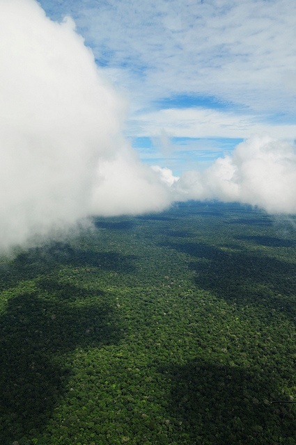 Aerial view of the Amazon Rainforest, Brazil by CIFOR, via Flickr
