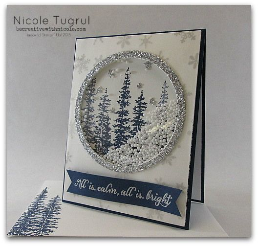 Shaker card by Nicole: Wonderland, Silver Glimmer Paper, Winter Wonderland Vellum Stack, Circles framelits - all from Stampin' Up!
