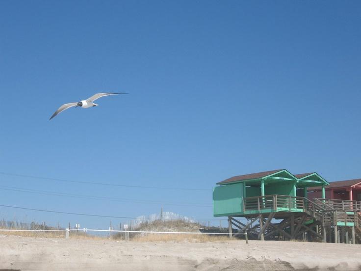 Onslow Beach, Camp LeJeune, North Carolina. <3