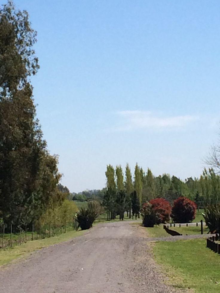 Road to paradise #estanciasargentinas #argentinapoloday #poloresort