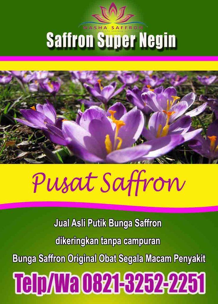 Grosir Wa 0812 3252 2251 Tsel Jual Putik Bunga Saffron Bandung Bogor Bunga Penjual Bunga Bunga Kering